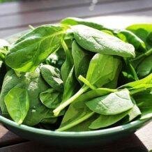 Dieta wegetariańska dla dzieci – zdrowa, czy nie?